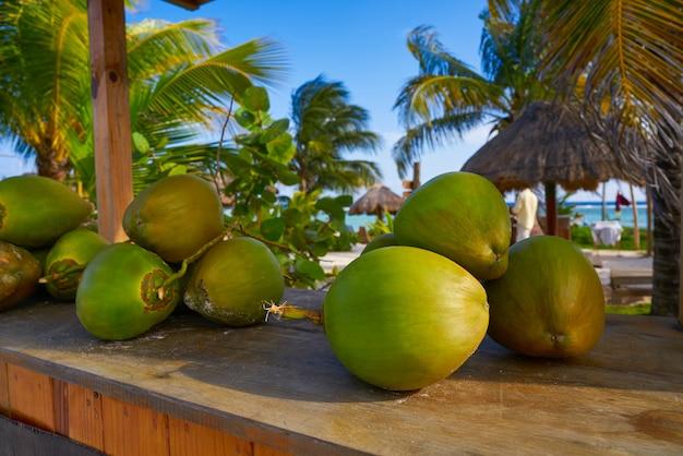 リビエラマヤのカリブ海のココナッツの果実 Premium写真