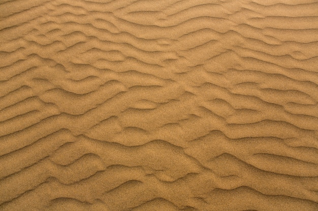 マスパロマスグランカナリア島の砂漠の砂丘 Premium写真