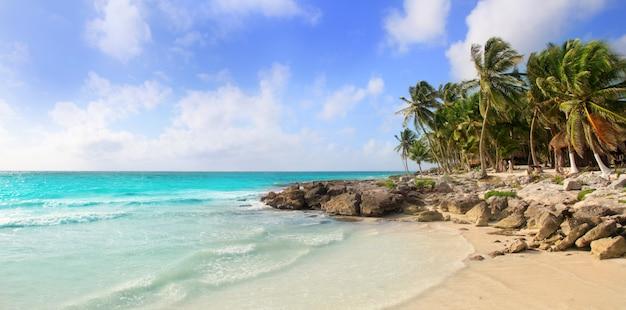 Карибский бассейн тулум мексика тропический панорамный пляж Premium Фотографии