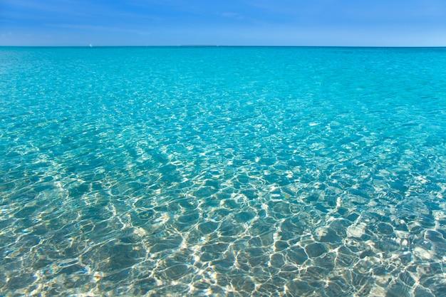 白い砂浜とターコイズ色の海水と熱帯のビーチ Premium写真