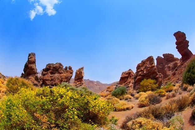 テネリフェ島テイデ国立公園のカナリア諸島 Premium写真