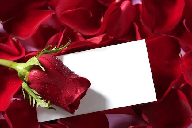 白紙のメモと赤いバラマクロをクローズアップ Premium写真