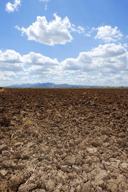 耕された茶色の粘土畑青い空地平線 Premium写真