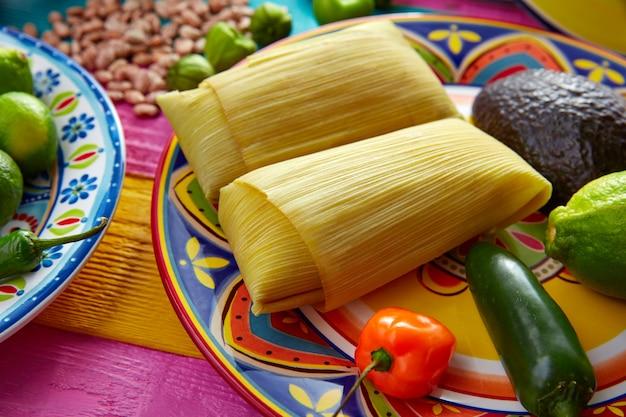 トウモロコシの葉のメキシコタマーレタマレス Premium写真