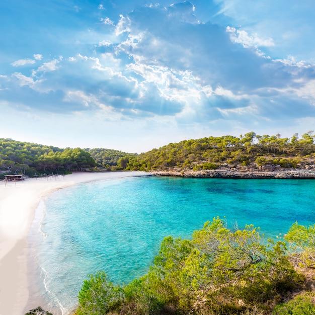 Майорка пляж самарадор амарадор в мондраго Premium Фотографии