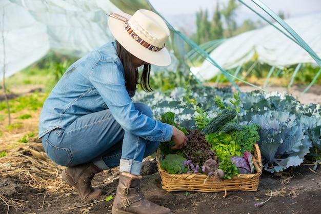 野菜を集める女性 Premium写真