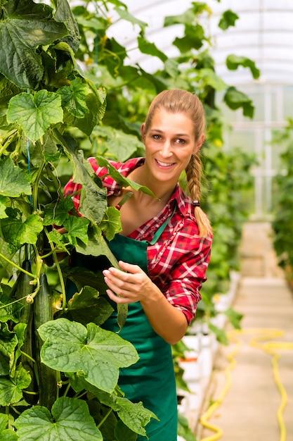 市場の庭や保育園の女性庭師 Premium写真
