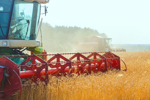 麦畑に取り組んでいるコンバイン Premium写真