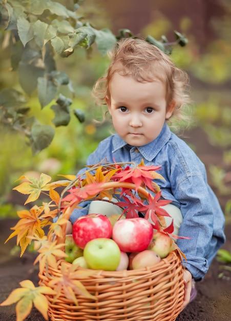 子供の女の子と秋の庭のりんごのバスケット Premium写真