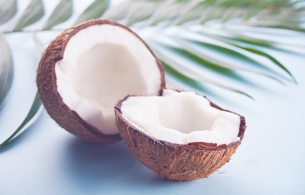 ヤシの葉と青い背景にココナッツ Premium写真