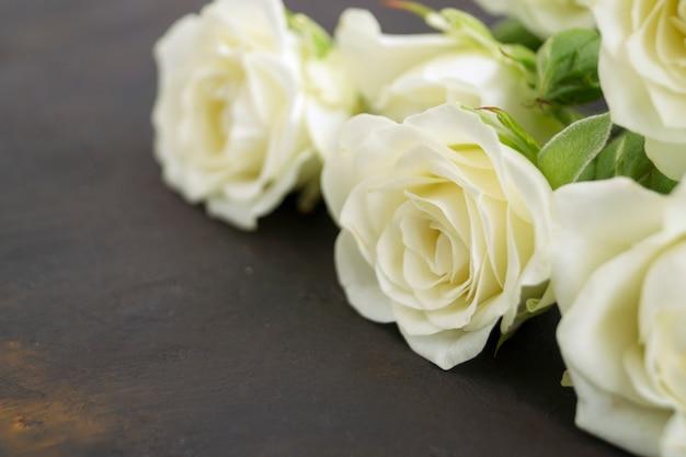 Белые цветущие розы на темном фоне. Premium Фотографии