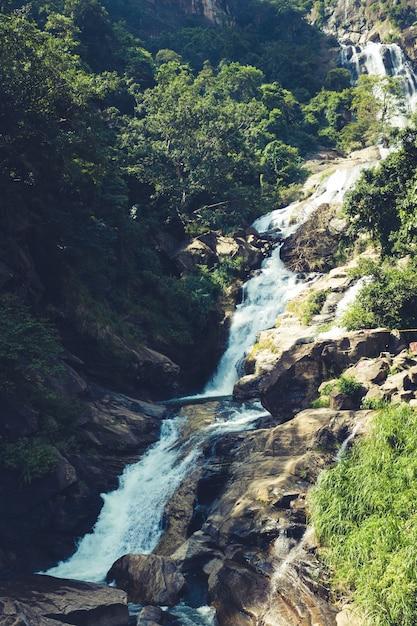 Красивый водопад в лесах шри-ланки. водопад рамбода Premium Фотографии