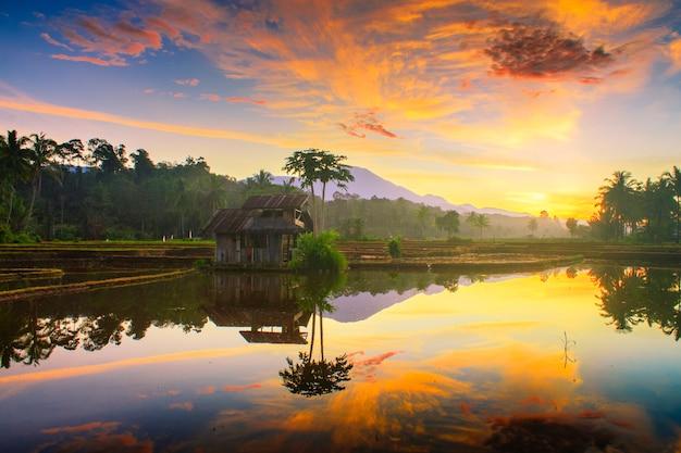 北ベンクルインドネシアの田んぼで朝の空 Premium写真