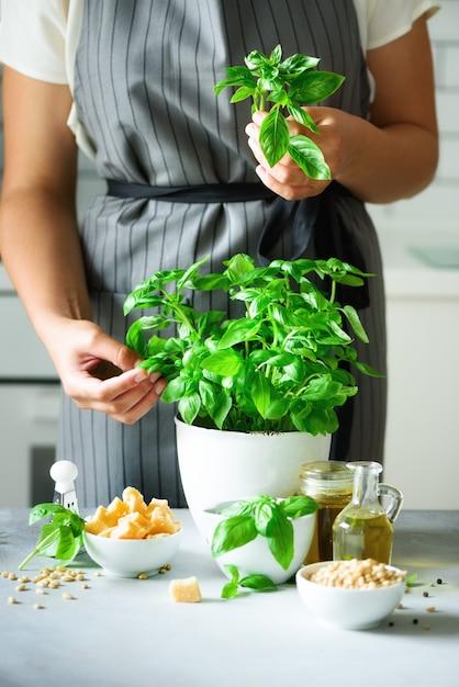 新鮮な有機バジル鍋を保持しているスタイルエプロンの女 Premium写真