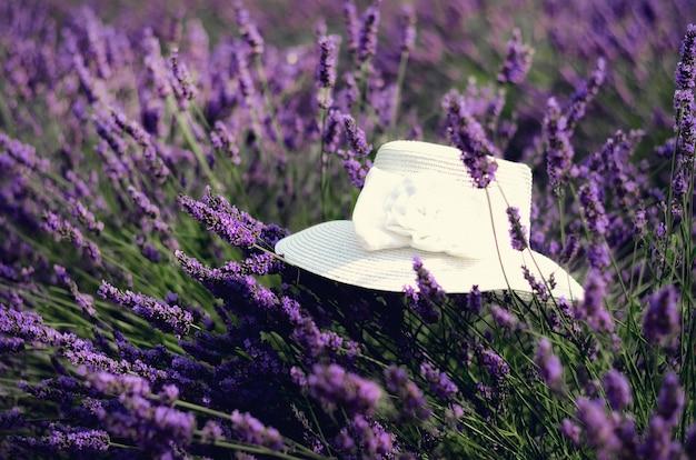 Шляпа белой женщины на фиолетовых кустах лаванды. Premium Фотографии