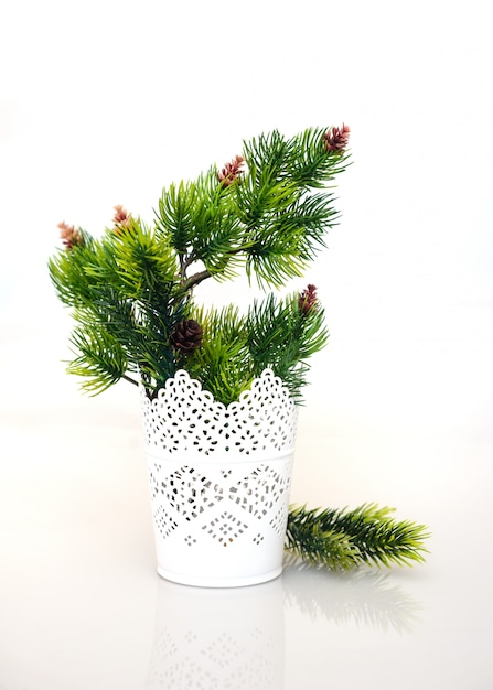 白い花瓶のモミの枝 Premium写真
