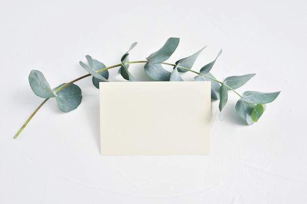 ユーカリの枝の葉と空白の紙カード Premium写真
