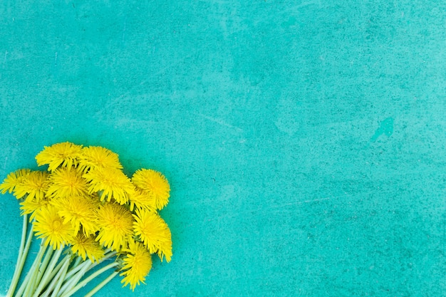 母の日黄色と青の背景 Premium写真