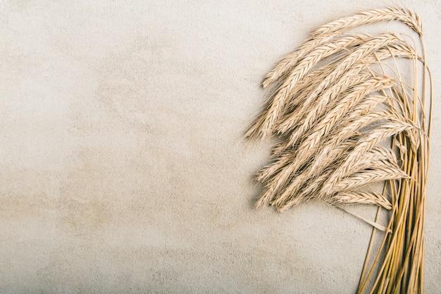 灰色の素朴な背景に熟した小麦 Premium写真