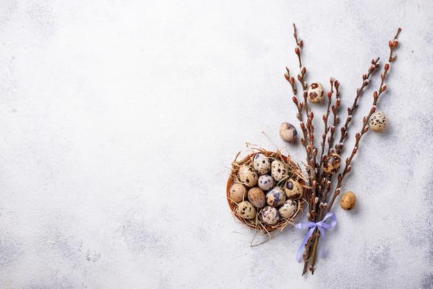 Пасхальный фон с перепелиными яйцами и вербой Premium Фотографии