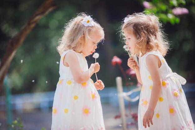 双子の女の子がタンポポを吹く 無料写真