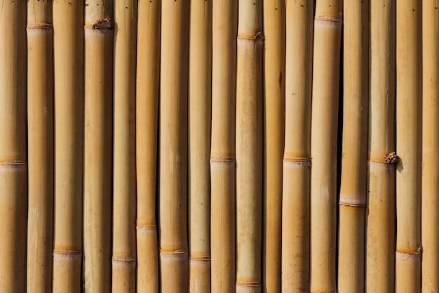 竹のフルフレームの背景 Premium写真