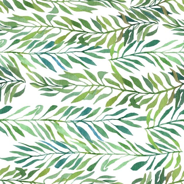 白で隔離される葉と水彩の秋と夏の枝 Premium写真