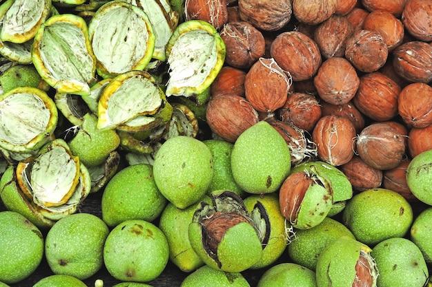 Грецкие орехи с дерева. грецкие орехи в зеленой кожуре. очищение орехов от зеленой кожуры. урожай грецких орехов. Premium Фотографии