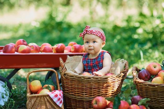 リンゴ園でリンゴを持つ少女。果樹園で有機リンゴを食べる美少女。 Premium写真