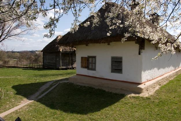 古代の伝統的なウクライナの小屋 Premium写真