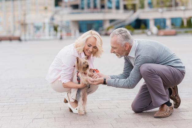 Старая пара вышла гулять с милой собачкой. Premium Фотографии