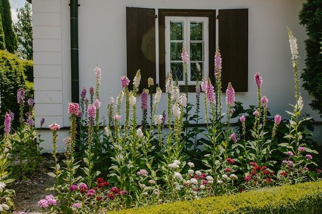 家の前にピンクの鐘と花壇 Premium写真