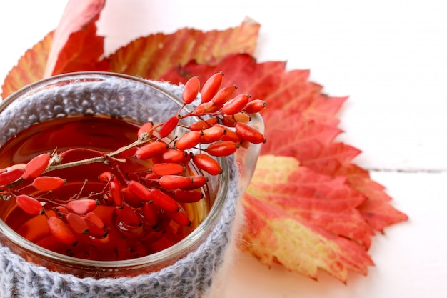 Барбарис чай с вязаной кружкой, изолированный Premium Фотографии