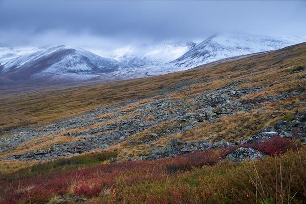 アルタイの秋の風景。 Premium写真