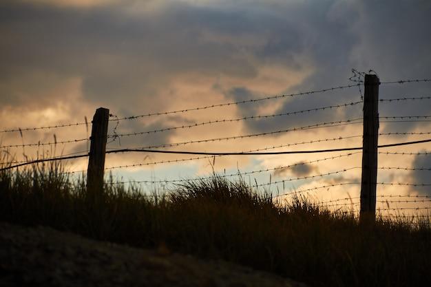 モンゴルとの国境の有刺鉄線のフェンス。アルタイのウコク高原。素晴らしい寒い風景 Premium写真