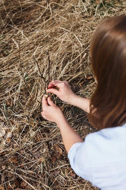 女の子は早春に野生のリンゴの移植片を作る Premium写真