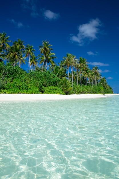 白い砂浜と海の熱帯の島 Premium写真