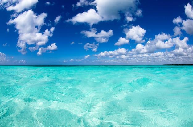 晴れた日に熱帯の海 Premium写真