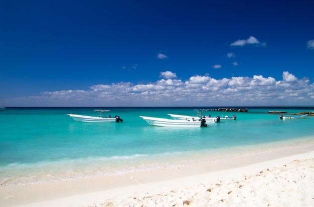熱帯の海のボート Premium写真