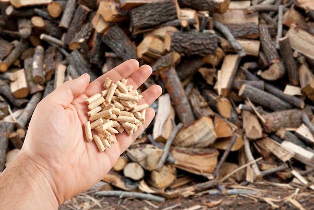 Древесные пеллеты в руке Premium Фотографии