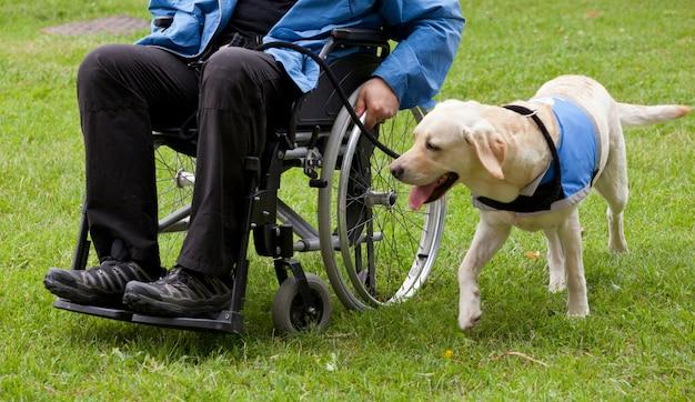 ラブラドールガイド犬と彼の身体障害者 Premium写真