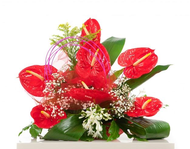赤いアンスリウムの花のバスケット Premium写真