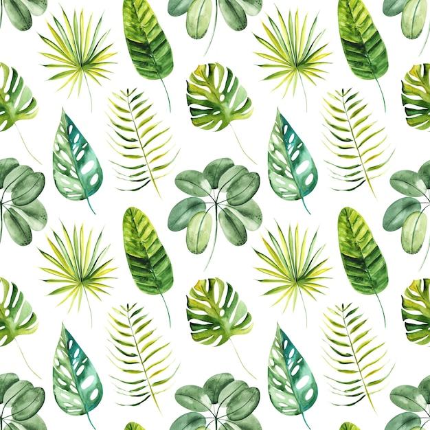 水彩のエキゾチックな熱帯の緑の葉によって描かれたイラストのシームレスパターン Premium写真