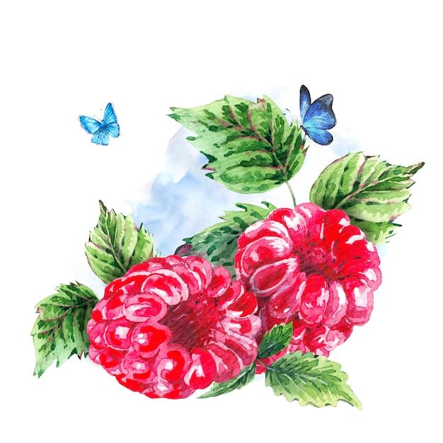 手描きの夏の水彩画のラズベリー Premium写真