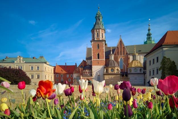 Польша, краков, цветы перед вавелем Premium Фотографии