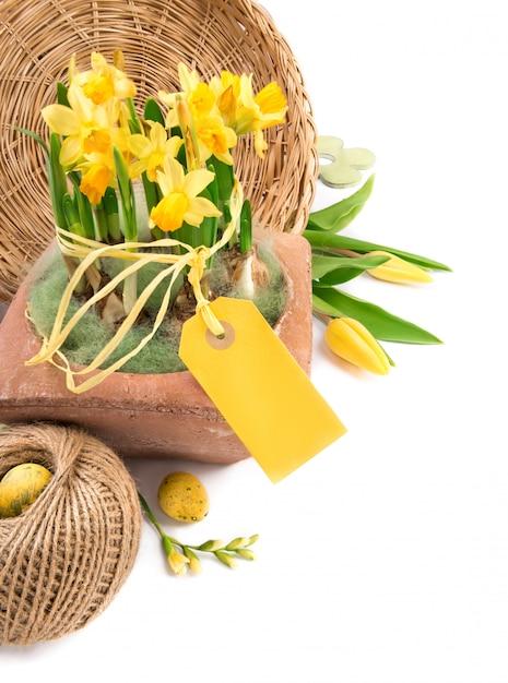 Пасхальная рамка с желтыми тюльпанами и нарциссами, пространство для текста Premium Фотографии
