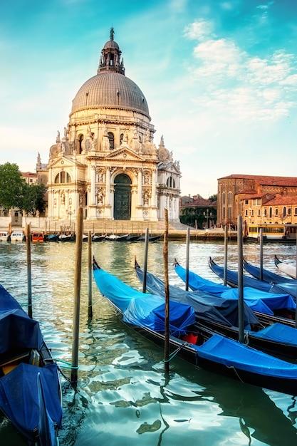ゴンドラと大聖堂サンタマリアデッラサルーテヴェネツィア Premium写真