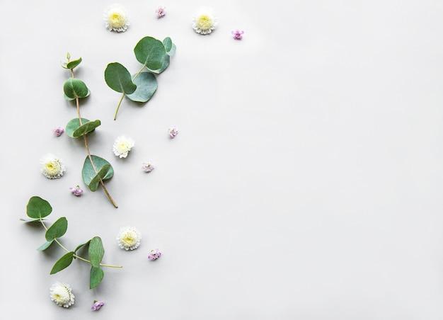 白い背景の上の花の組成 Premium写真
