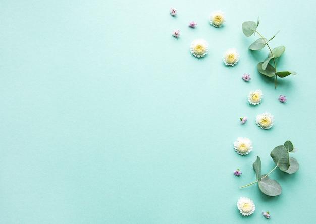 Композиция цветов на зеленом фоне Premium Фотографии