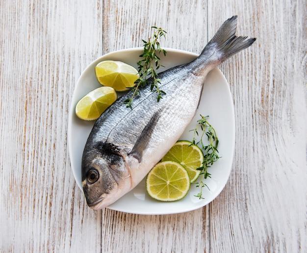 新鮮なヨーロッパヘダイ魚 Premium写真